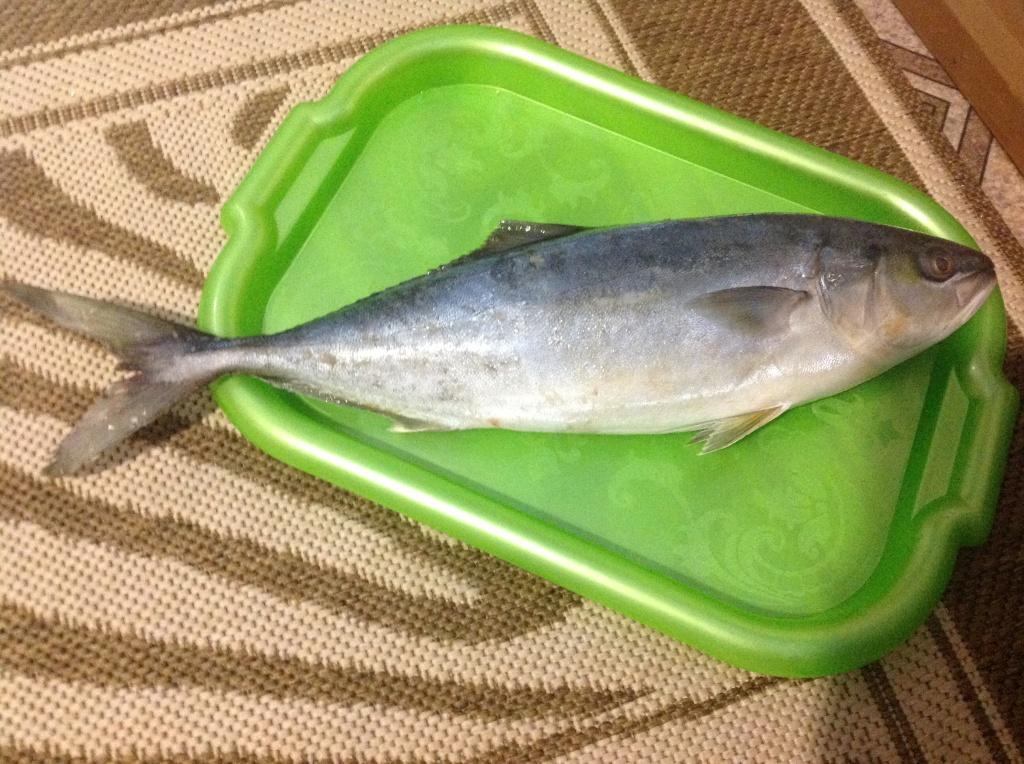 Оксана из «Остров» просит распознать рыбу по фото